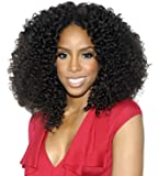 Royal-first 14inch 1b# Natural Black Color Glueless Afro kinky Curly Brazilian Virgin Hair Lace Front Wig
