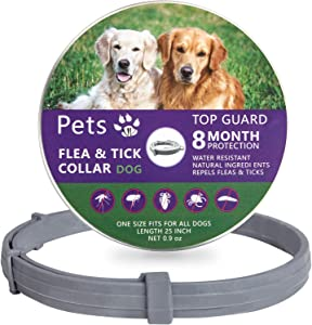 Petsvv 2 Pack Flea and Tick Collar for Dogs, Allergy Prevention to Dog Flea Collars, 8 Months Protection, Adjustable & Waterproof, 25 inch