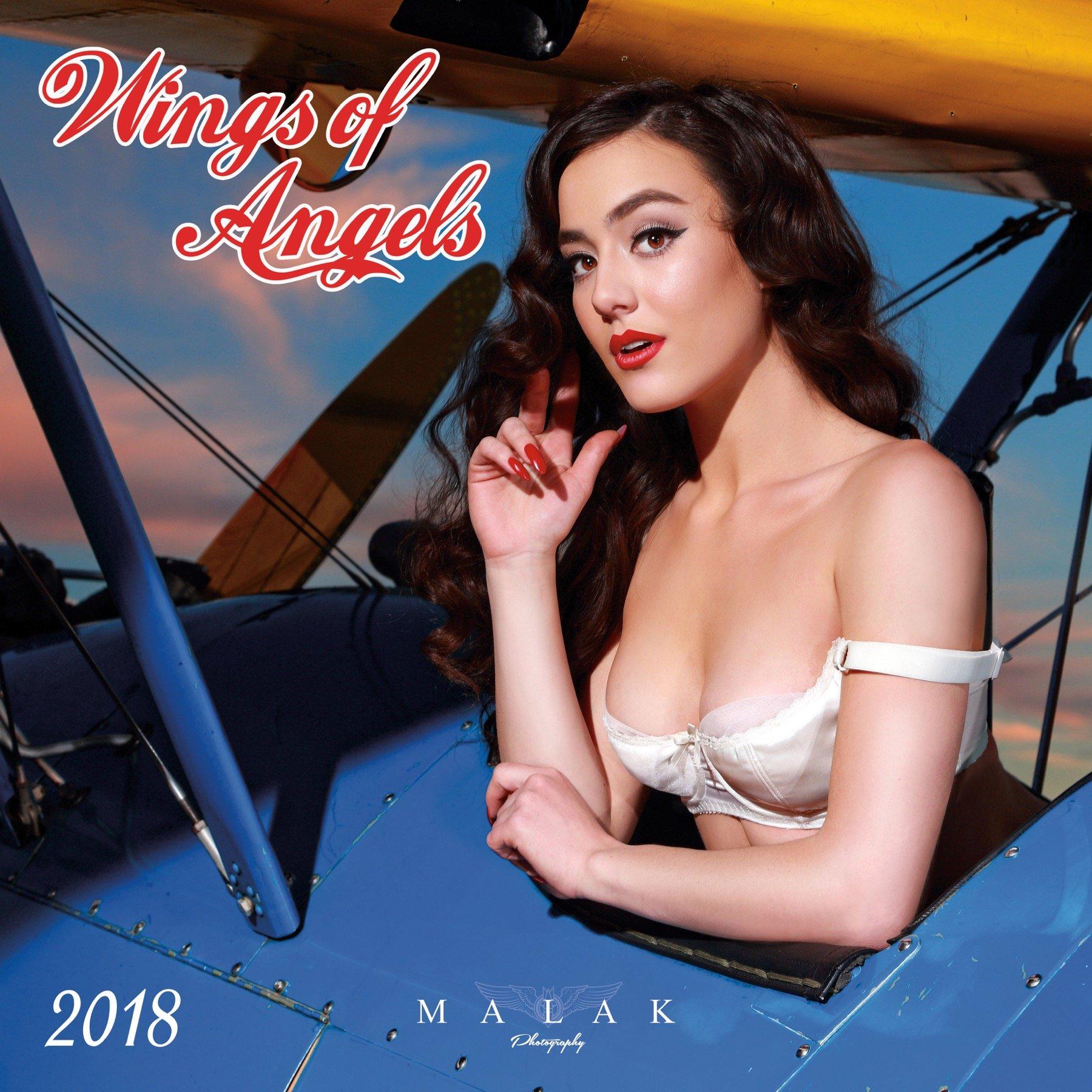 Wings of Angels 2018 Wall Calendar pdf