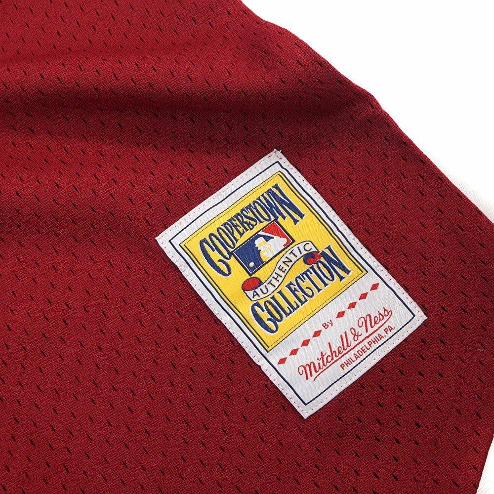 Mitchell /& Ness Darren Daulton Philadelphia Phillies #10 Mens 1991 Mesh Batting Practice Jersey