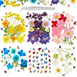 124Pcs Real Dried Pressed Flowers Leaves Natural Set with Butterfly Stickers and Tweezers Scrapbooking Supplies for DIY Candl