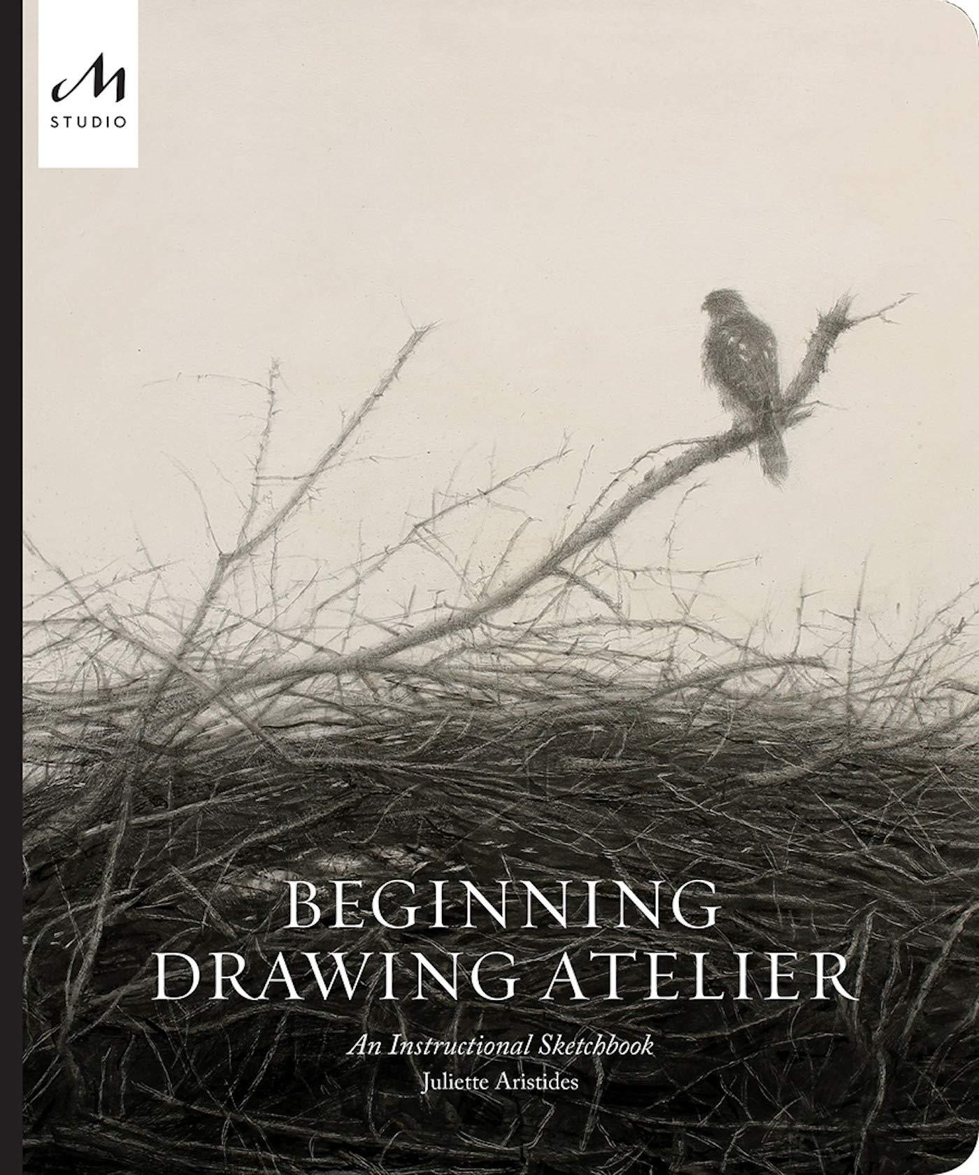 Beginning Drawing Atelier  An Instructional Sketchbook