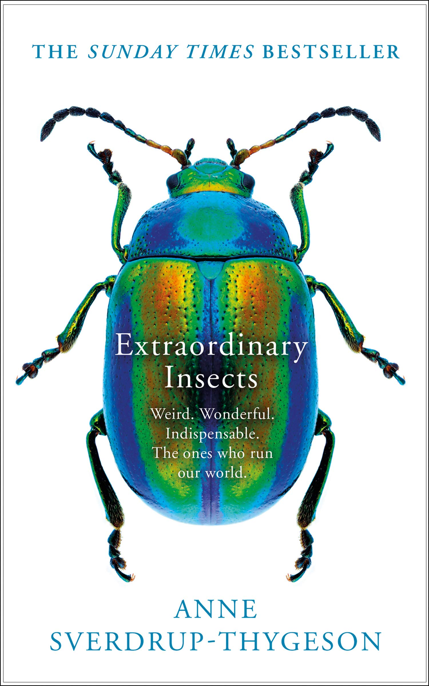 Extraordinary Insects  Weird. Wonderful. Indispensable. The Ones Who Run Our World.