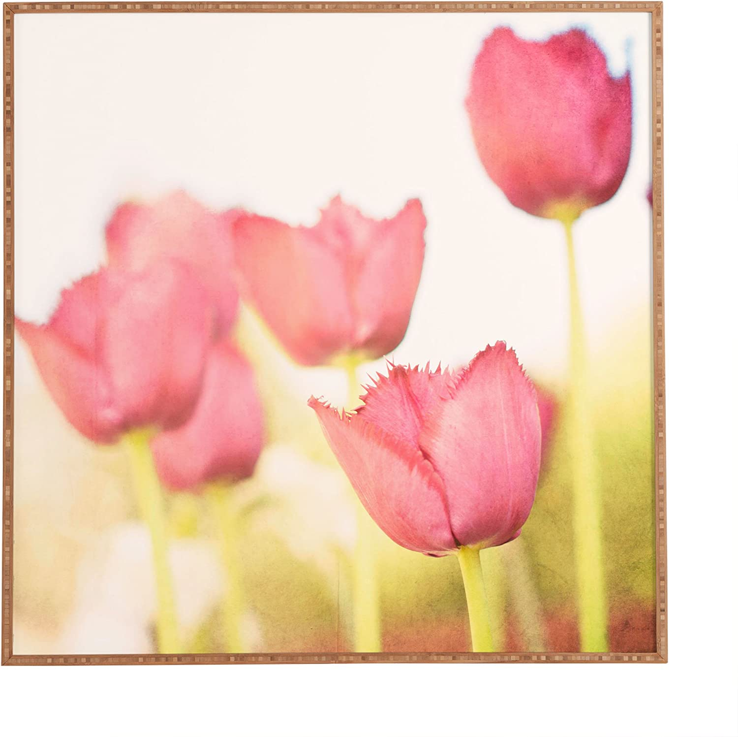 Deny Designs Bree Madden Pink Tulips Framed Wall Art 20 X 20 Home Kitchen