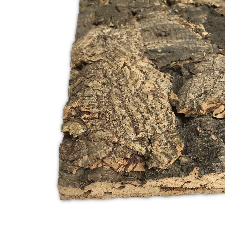 Face arrière en liège Terrarium naturel 90x 60cm avec découpe Désir | Tableau en liège |terrariumrückwand | Décoration Terrarium fonctionnels | Face arrière en liège Vogelgaleria