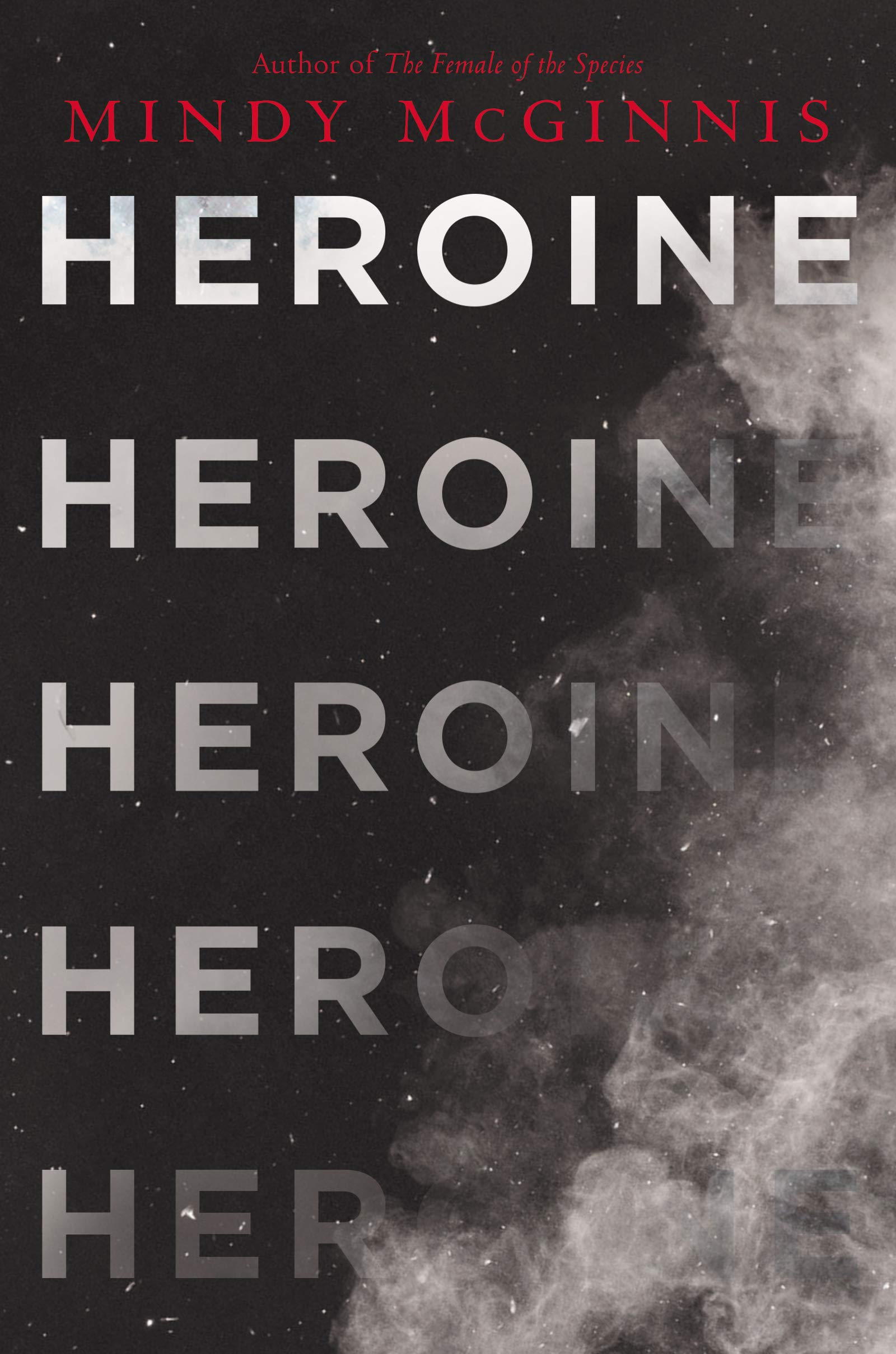 Image result for heroine mindy mcginnis