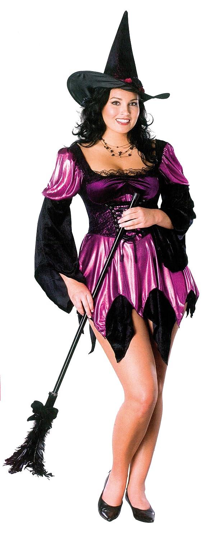 Amazon.com: Secret Wishes Plus Size Sexy Witch Costume, Purple ...
