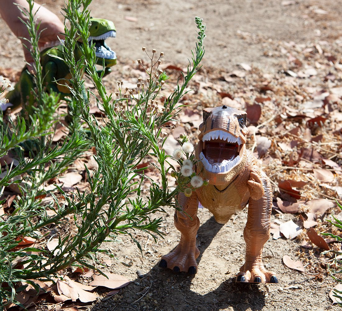 Warp Gadgets - Remote Control LED Brown T-Rex Dinosaur 19 Inches - Walking Dancing, Roaring, Light Up RC Toy by Warp Gadgets (Image #9)