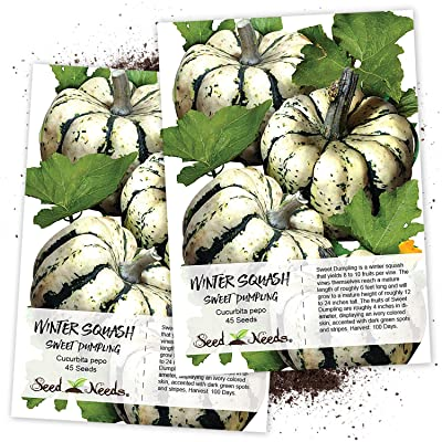 Seed Needs, Sweet Dumpling Winter Squash (Cucurbita Pepo) Twin Pack of 45 Seeds Each Non-GMO : Vegetable Plants : Garden & Outdoor