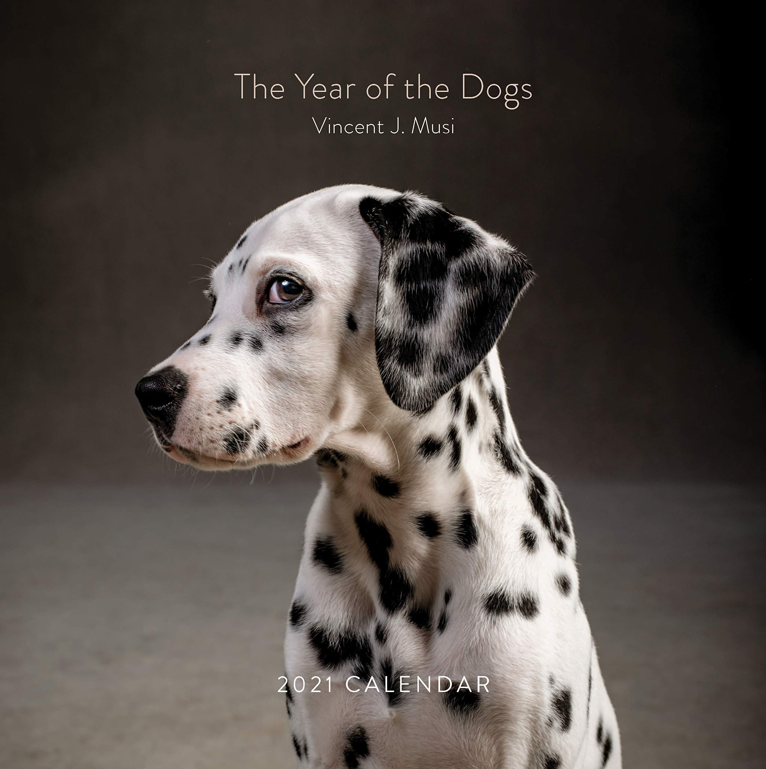 The Year of the Dogs 2021 Wall Calendar: (Dog Portrait 12 Month