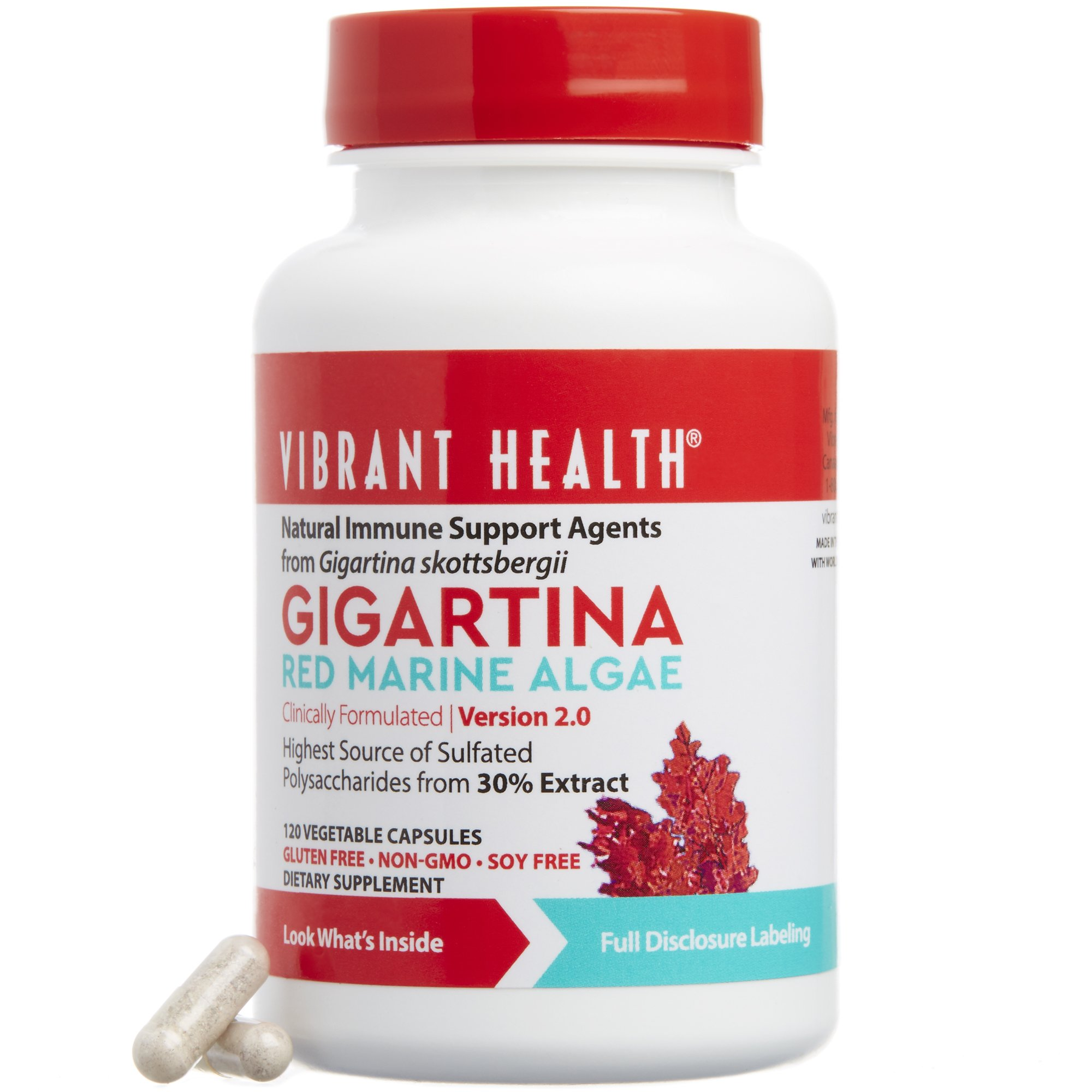 Vibrant Health - Gigartina Red Marine Algae, Natural Support for Immune Function and Healing, Gluten Free, Dairy Free, Non-GMO, Vegetarian, 120 Count (FFP)