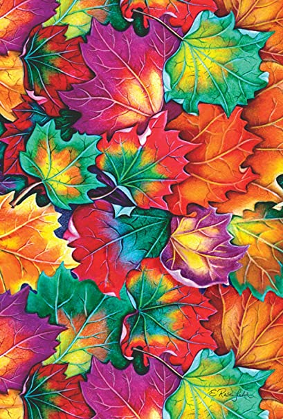 Amazon Com Toland Home Garden Leaf Collage 28 X 40 Inch Decorative Colorful Autumn Leaves House Flag Garden Outdoor