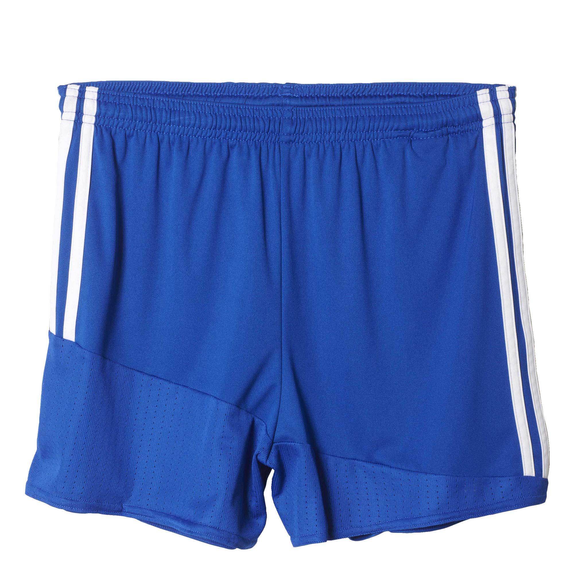 adidas Regista 16 Drydye Shorts Women's by adidas