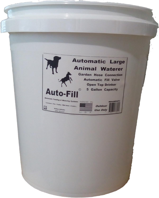 NEW DESIGN - Automatic Dog & Horse Waterer 5 Gallon Bucket - Garden Hose Connection
