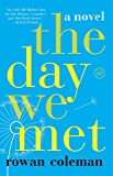 The Day We Met: A Novel