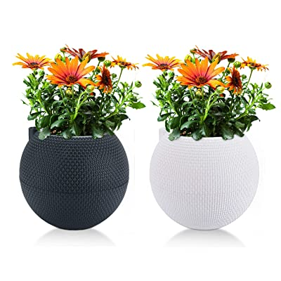 T4U 7 Inch Plastic Self Watering Planter Pots - White & Grey, Set of 2, Spherical Plant Pot Long-Term Water Storage Flower Pot Stylish Decorative Garden Pot for House Plants, Herbs, African Violets : Garden & Outdoor