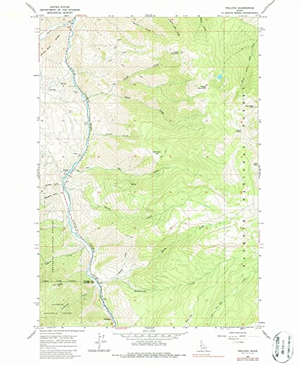 Amazon.com: Idaho Maps | 1964 Pollock, ID USGS Historical ...