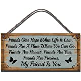 Gigglewick Gifts Shabby Chic Wall Plaque Friends Give Hope When Life Is Low, Friends Are A Place Where We Can Go, Friends Are Honest, Friends Are True, Friends Are Precious, My Friend Is You