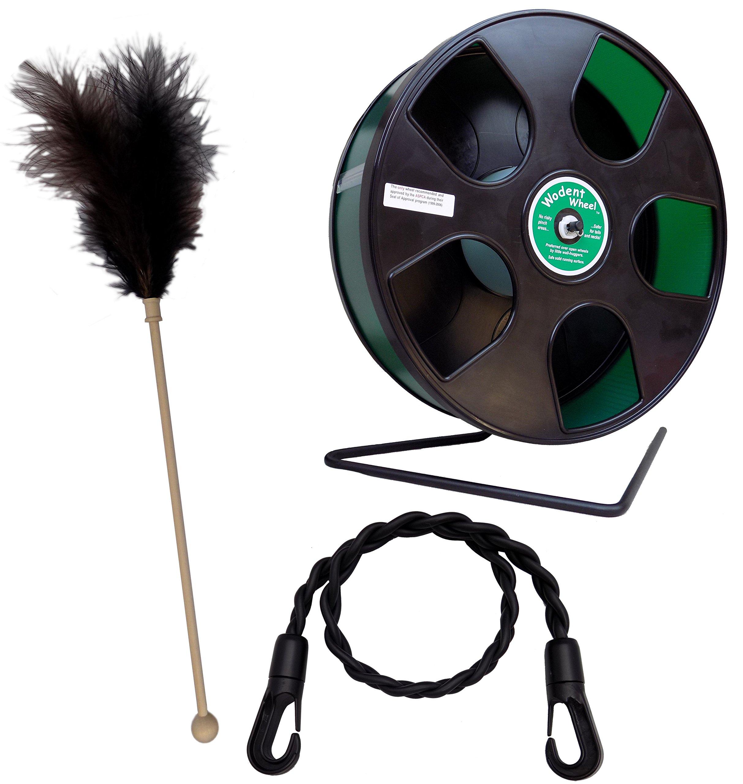 Sugar Glider Toy Pack - Feather, Wodent Wheel, Rope Toy by Suncoast Sugar Gliders by Suncoast Sugar Gliders