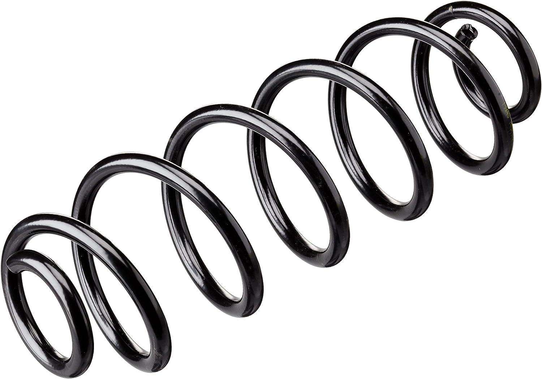Lesjofers 4204276 Coil Spring Rear
