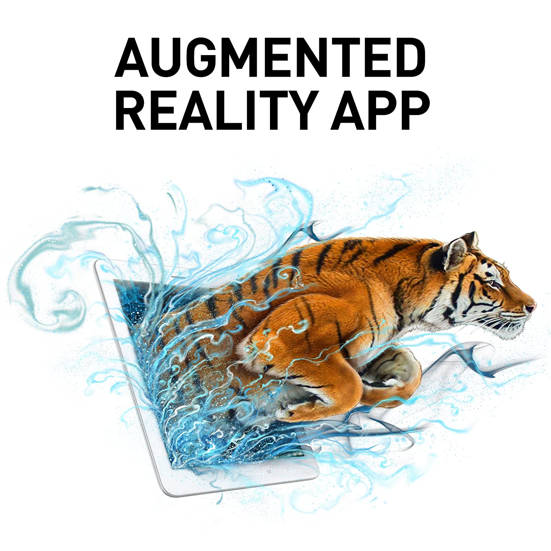 NATIONAL GEOGRAPHIC Wildlife Wow! - STEM Toy with FREE Augmented Reality App Medium Kangaroo Realistic Soft Safari Action Figure