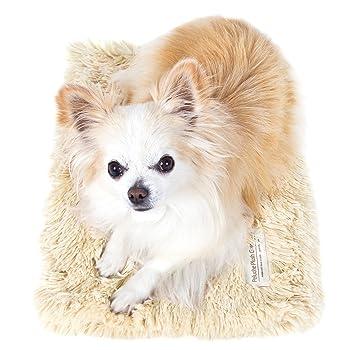 "Peluche Powder Puff Shag Dog/Pet Blanket (11"" x 16"" Carrier Blanket"