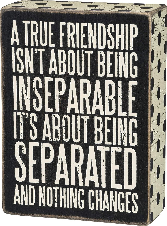 Primitives by Kathy Polka Dot Trimmed Box Sign, True Friendship