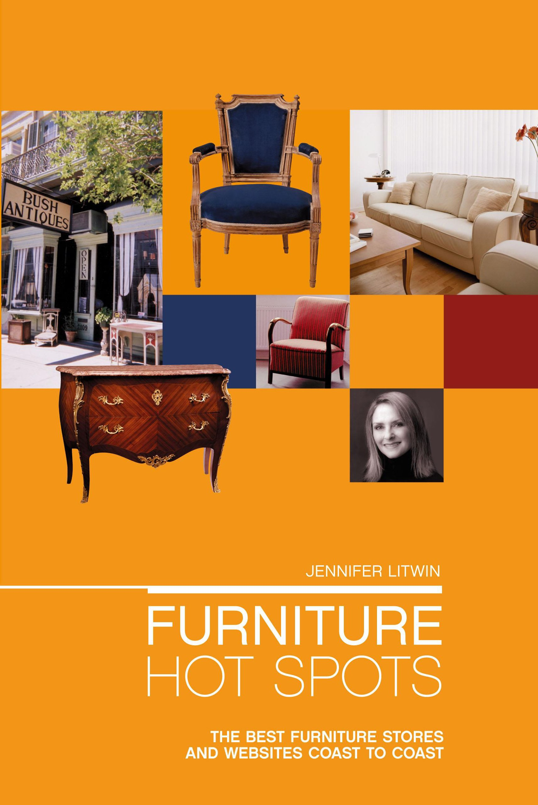 Furniture Hot Spots: The Best Furniture Stores And Websites Coast To Coast:  Jennifer Litwin: 9781592285891: Amazon.com: Books