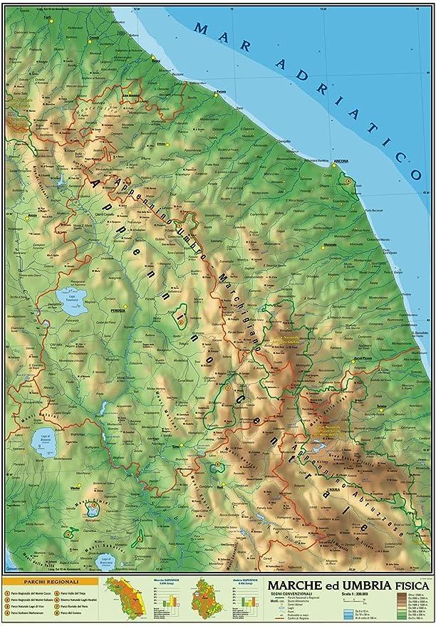Cartina Fisica E Politica Delle Marche.Carta Geografica Murale Regionale Marche Umbria 100x140 Bifacciale Fisica E Politica Amazon It Cancelleria E Prodotti Per Ufficio