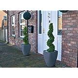 Best Artificial Lot de 2(TM) 3m 90cm buis Effet topiaire en spirale arbres * * * * * * * * * * * * * * * * UV Fade protégé * * * * * * * * * * * * * * * *