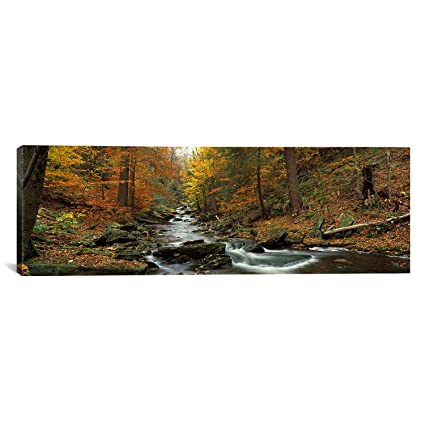 iCanvasART Fall Trees Kitchen Creek PA by Panoramic Images Canvas Art on kitchen ideas for design, kitchen ideas for accessories, kitchen ideas for painting, kitchen ideas for windows, kitchen ideas for walls, kitchen ideas wood, kitchen ideas for red, kitchen ideas for wallpaper,