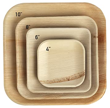 Brheez Palm Leaf Disposable Bamboo Look SQUARE 4 Inch -Natural Color - Elegant Sturdy PLATES & Amazon.com: Brheez Palm Leaf Disposable Bamboo Look SQUARE 4 Inch ...