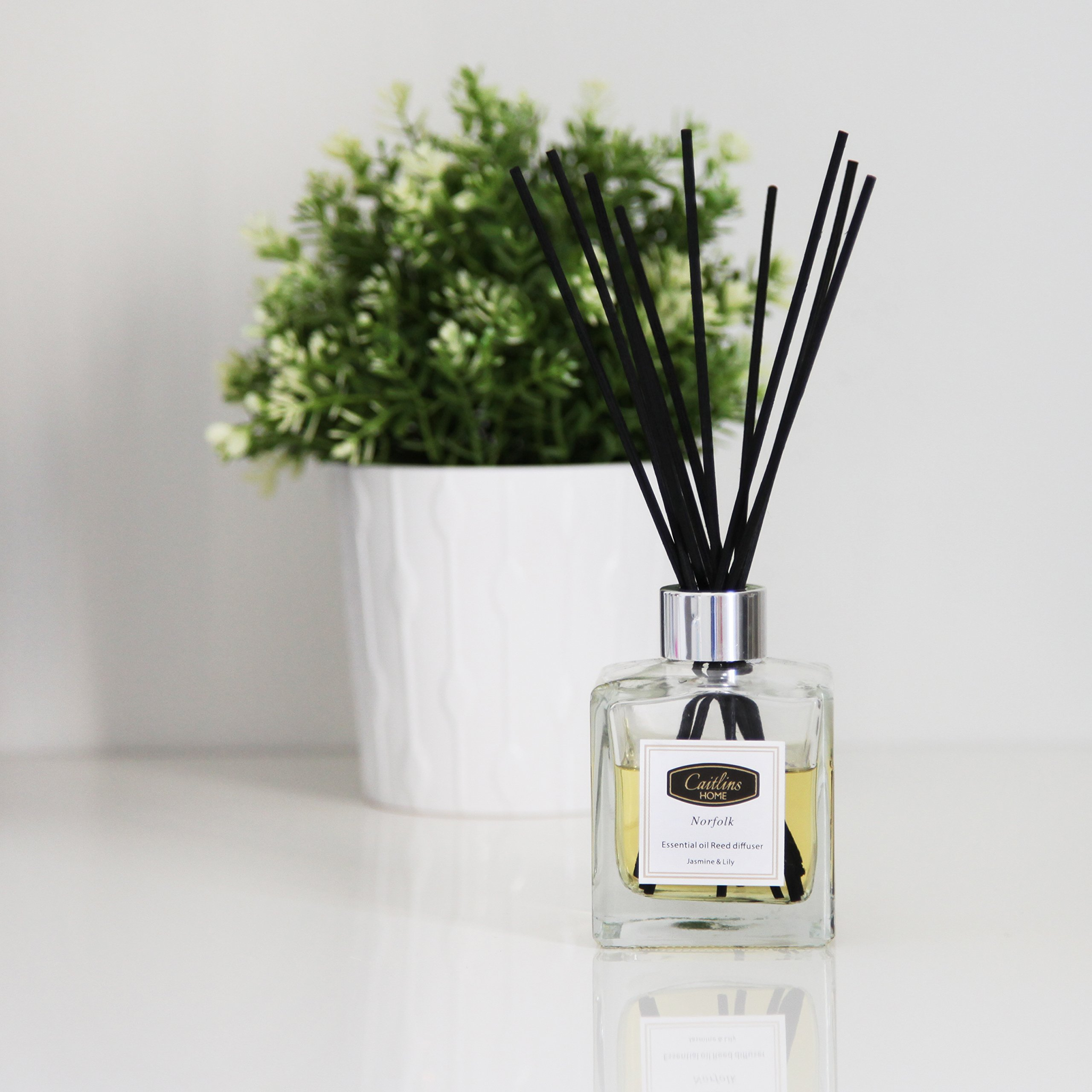 Caitlins Home Reed Diffuser Jasmine Lily Scent Natural Reed Sticks Home Fragrance Gift 4.4floz-125ml by Caitlins Home (Image #3)