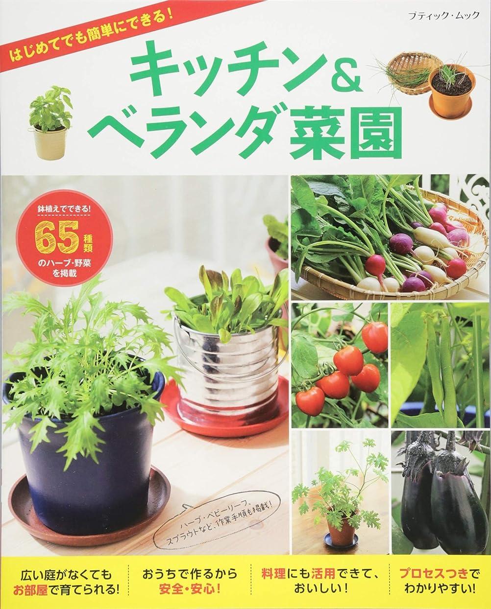 コースオーチャードマインドフルSENCE UP LIFEシリーズ 雑貨と一緒に楽しむ多肉植物アレンジ BOOK (SENSE UP LIFEシリーズ)
