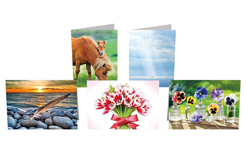 Tarjeta de felicitación Avanti prensa colección 10-Count, 10-Count, 10-Count, Blank (32016) e9deec