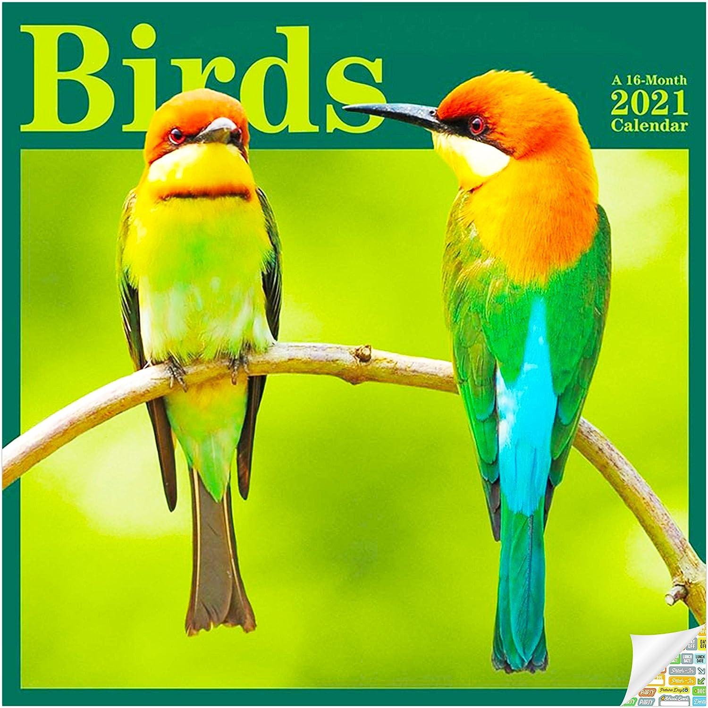 Birds Calendar 2021 Set - Deluxe 2021 Birding Wall Calendar with Over 100 Calendar Stickers (Bird Watching Gifts, Office Supplies)