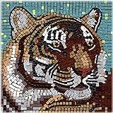 Kit Mosaico 20x20 , Tigre