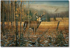 WGI-GALLERY WA-NWTD-128 November Whitetail Deer Wooden Wall Art, 24