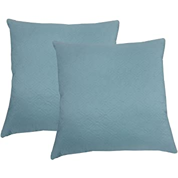 Amazon.com: 2 almohadas minerales (20