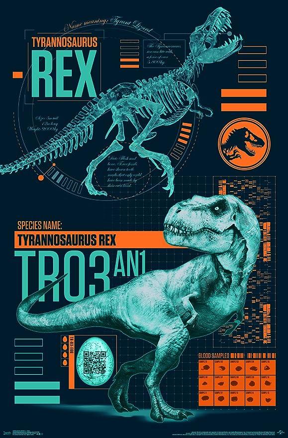 Framed Print Picture Poster Jurassic World T-Rex Art Velociraptor Dinosaur