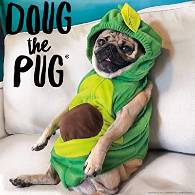 Buffalo Games - Doug The Pug - Avocado Doug - 300 Large Piece Jigsaw Puzzle: Toys & Games