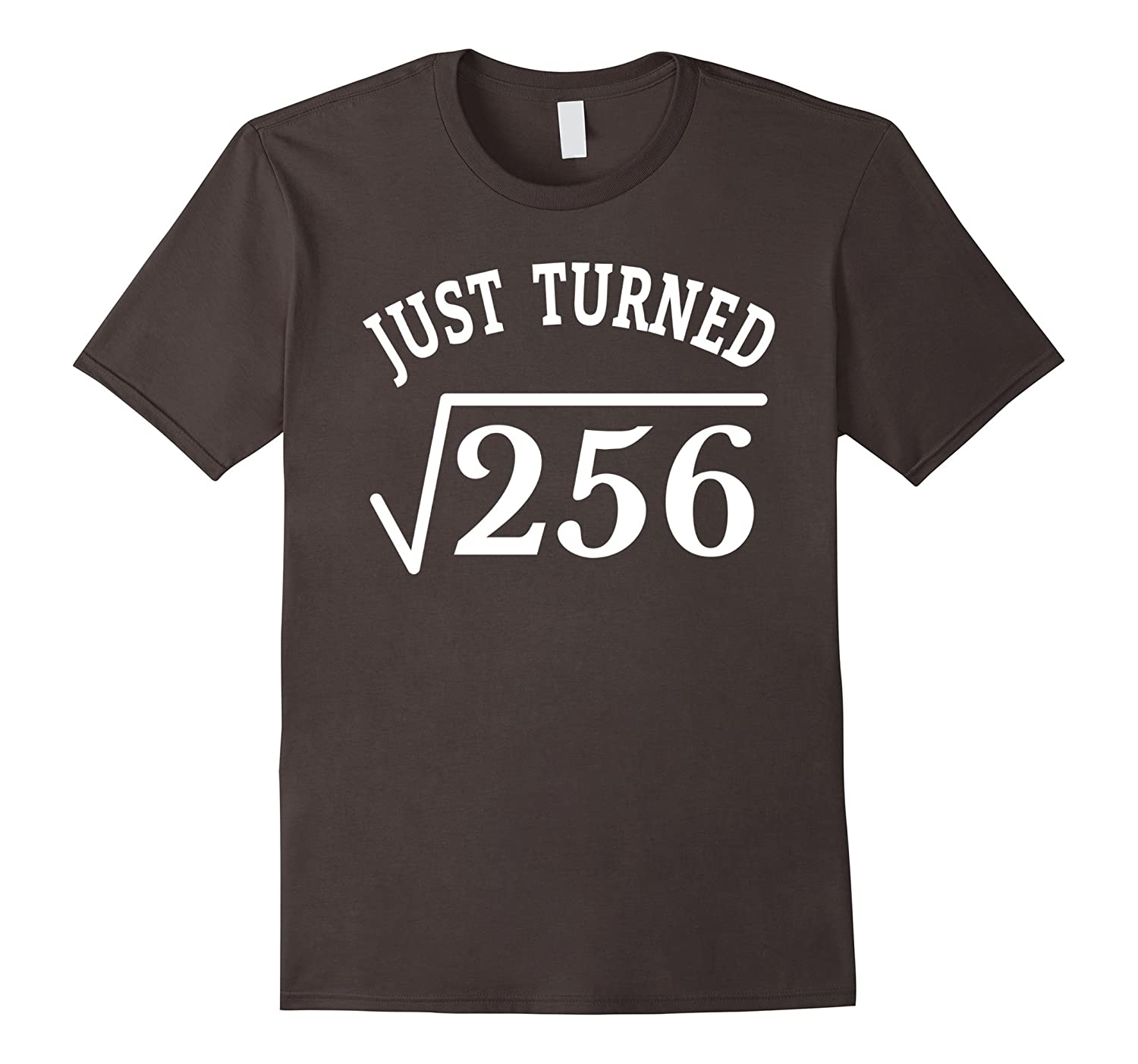 16 Years Old Just Turn Square Root 256 16th birthday T-Shirt-PL