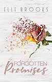 Forgotten Promises (The Promises Series Book 2)