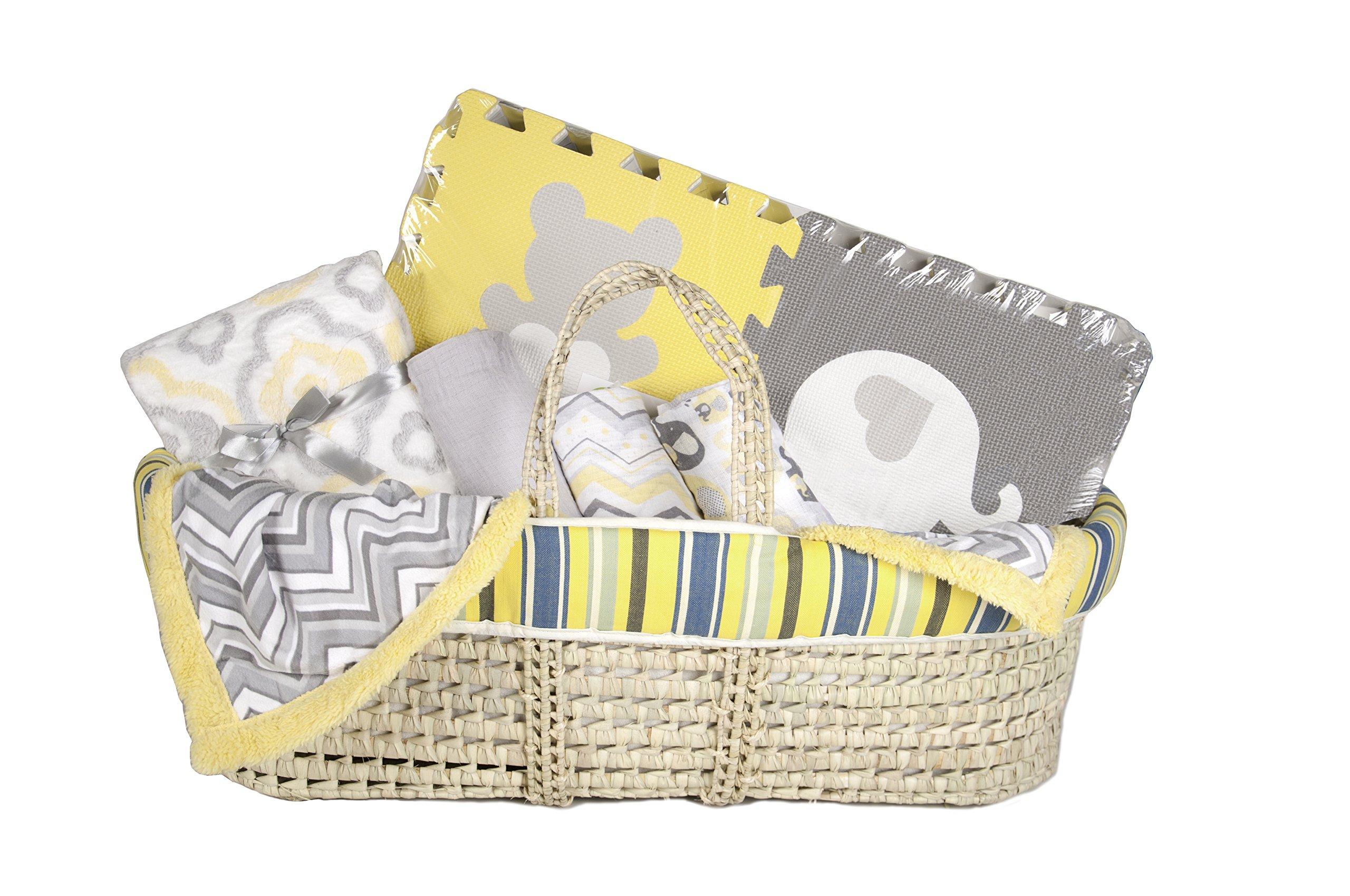 Tadpoles Baby Shower Gift Basket, Spring