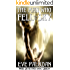 The Man Who Fell from the Sky (Angel Detectives #1)
