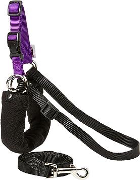 AncolPure Dog Listeners Stop Pulling Dog Training Harness  Lead Set Medium