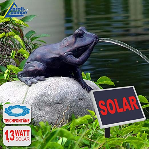 Fuente de jardín con bomba solarcomo decoración para terraza, estanque o jardín, Solar ohne Akku MÄRCHEN-FROSCH: Amazon.es: Hogar