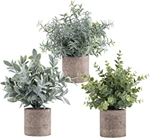 ROMAY 3 Pack Mini Potted Artificial Plants Fake Eucalyptus Greenery in Pots for Home Office Desk Decor
