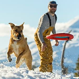 best flying discs for dogs to play with in the snow