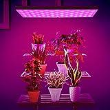 Amzdeal Lampada di Pianta LED di Coltivazione Pannello Ultra Micro 225 LED 35W Rosso e Blu